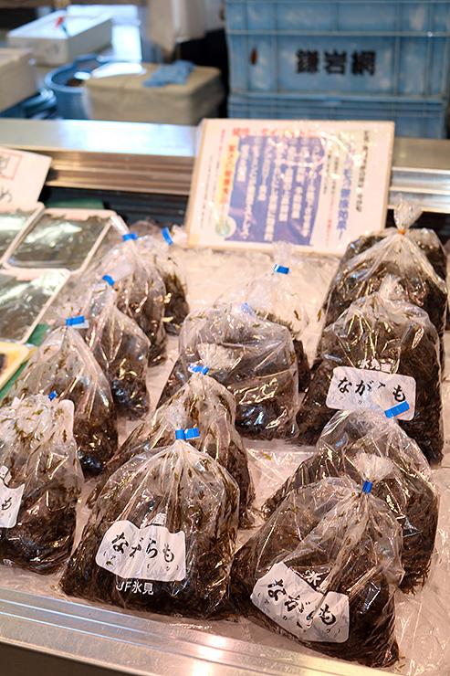 氷見魚市場から初出荷され、鮮魚店に並ぶナガラモ=ひみ番屋街