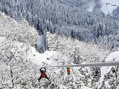 白銀の森を冒険しよう 「ツリーピクニック」が冬季営業