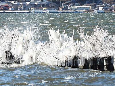 諏訪湖に「氷の花」 白波の造形