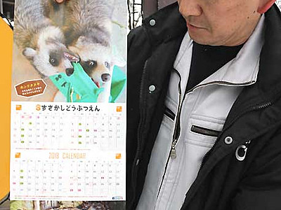 動物の「変顔」カレンダー 須坂市動物園、リニューアル販売