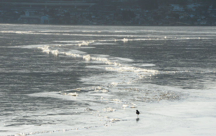 再び全面結氷した諏訪湖にできた亀裂=27日午後3時52分、下諏訪町東赤砂