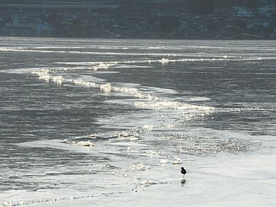 諏訪湖「御神渡りの兆候」 氷に複数の亀裂