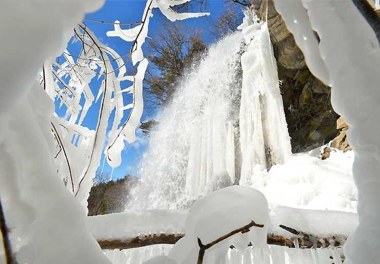しぶきが凍って大きなつららができた乙女滝。周囲の木々も氷に覆われていた=30日、茅野市の横谷渓谷