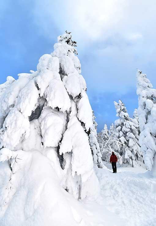 巨大なモンスターのように林立する根子岳山頂付近の樹氷=上田市