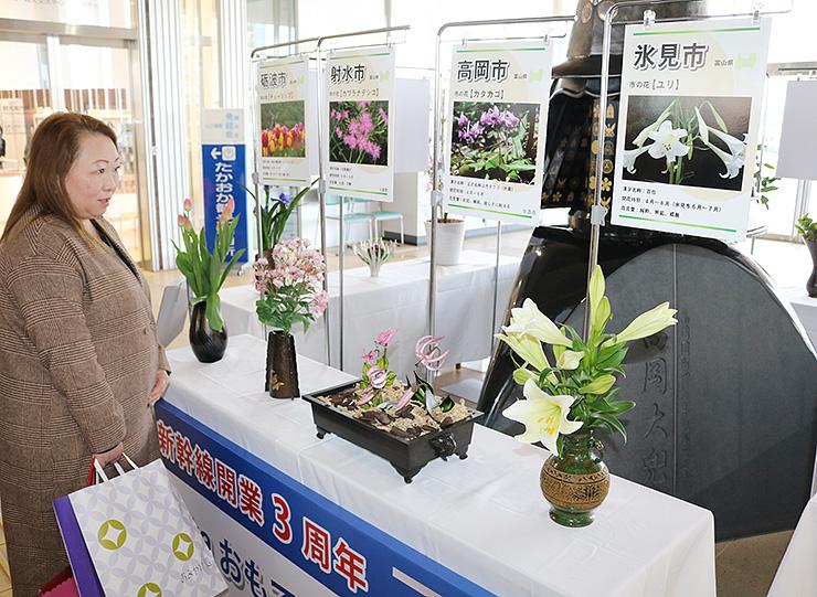 南北自由通路に飾られた富山、石川、岐阜3県の14自治体の花