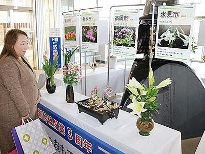 「飛越能の玄関口」PR 新高岡駅に14自治体の花