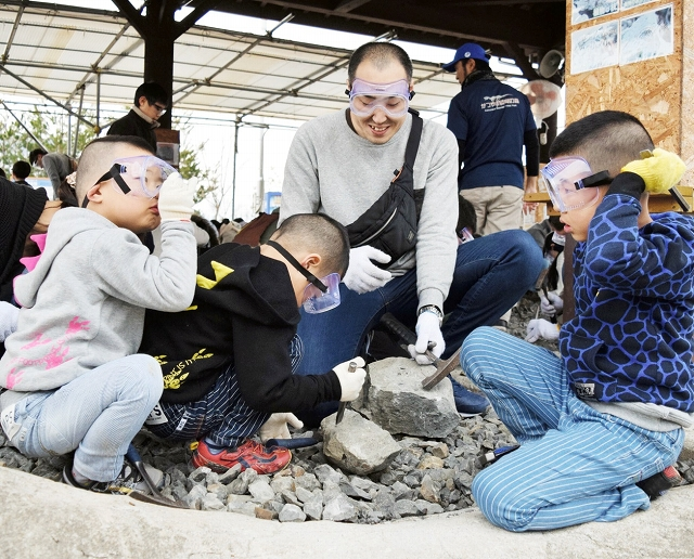 化石発見を目指しハンマーを振るう参加者=昨年3月、福井県勝山市村岡町寺尾