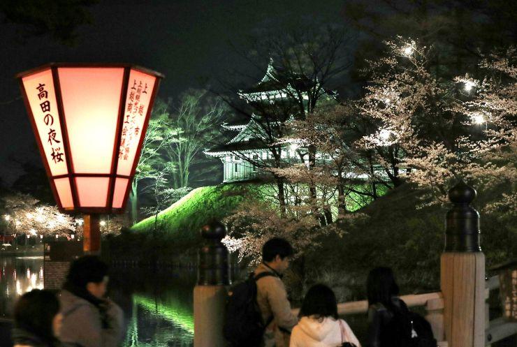 ぼんぼりの明かりがともされ、夜桜見物の市民らでにぎわう高田公園=4月2日午後8時すぎ、上越市