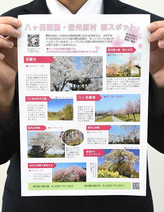 桜の名所や楽しめる時季などを紹介したチラシ