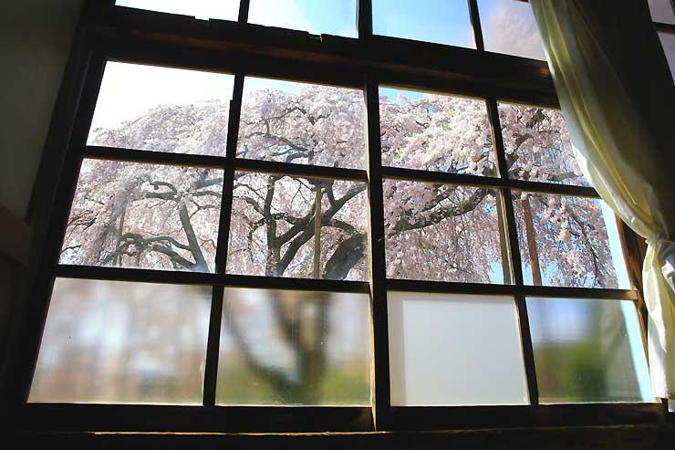 木造校舎の窓から望むシダレザクラ=4日、飯田市竹佐