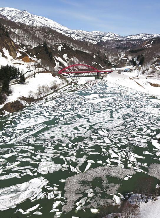 湖面に浮かぶ雪の塊が流氷のように見える「雪流れ」=4月5日、魚沼市の破間川ダム