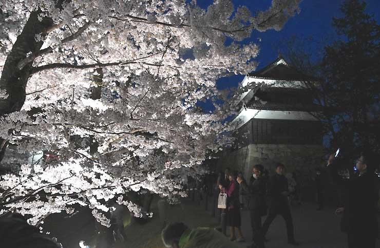 ライトアップされた上田城跡公園の桜。公園内は多くの来場者でにぎわった