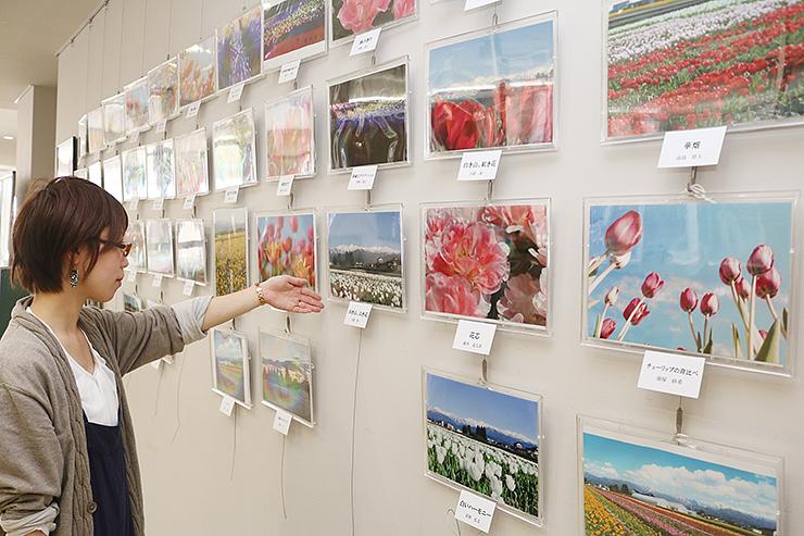 うるおい館で開かれているフォトコンテスト写真展