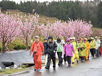 日本市民スポーツ連盟公認 ウオーキングコース開設 長岡