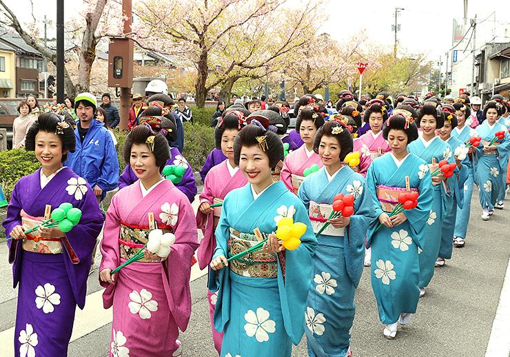 花が残る桜並木の道を歩く丸まげに着物姿の女性たち=氷見市比美町
