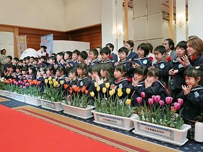 チューリップフェスティバル開幕 新潟市中央区