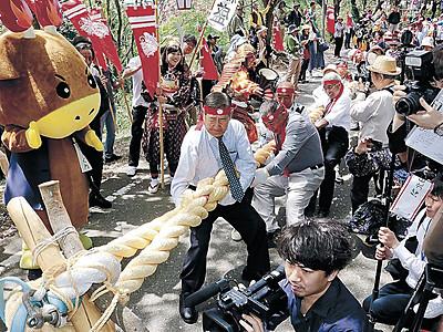 大綱引で源平合戦、津幡が雪辱 歴史国道イベント、小矢部破る