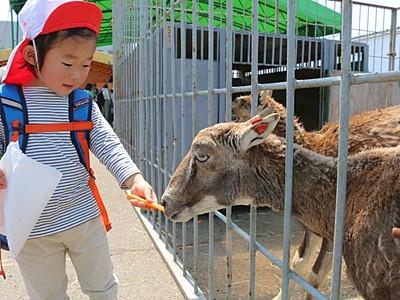 ドキドキ、ワクワク移動動物園に歓声 上越