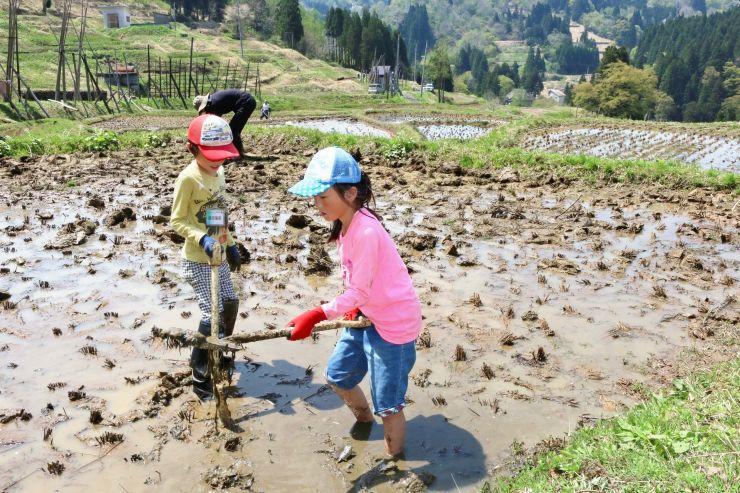 スコップで田んぼの土をならす棚田学校に参加した親子ら=22日、上越市