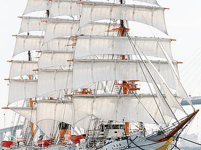 海の貴婦人 純白の装い 海王丸総帆展帆