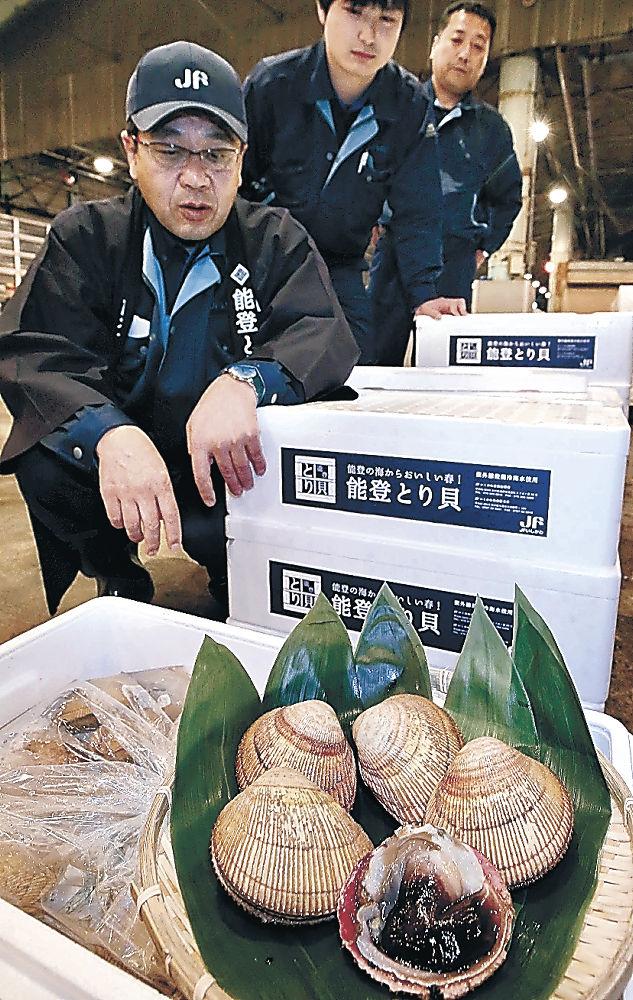 初競りにかけられた能登とり貝=金沢市の県漁協かなざわ総合市場