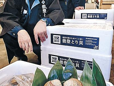 「能登とり貝」1個5千円 金沢で初競り
