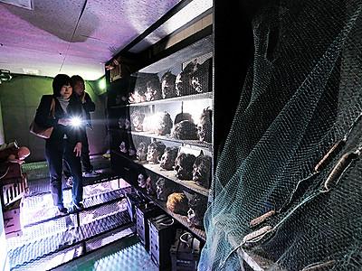 28日、お化け屋敷オープン 魚津ミラージュランド