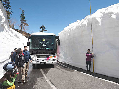 乗鞍の「雪の壁」楽しむ 春山バス5往復に増便へ