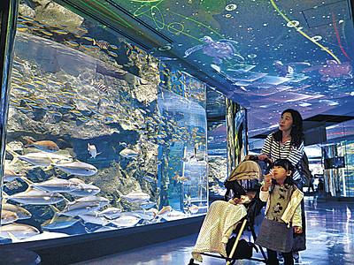 新たな水槽完成祝う 七尾・のとじま水族館