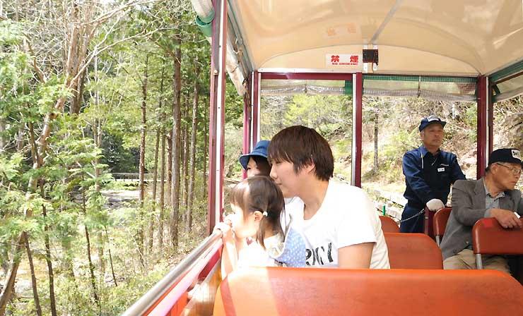 森林鉄道に乗って木々の緑を楽しむ観光客ら