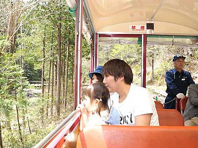 新緑に癒やされる休日 上松の赤沢自然休養林