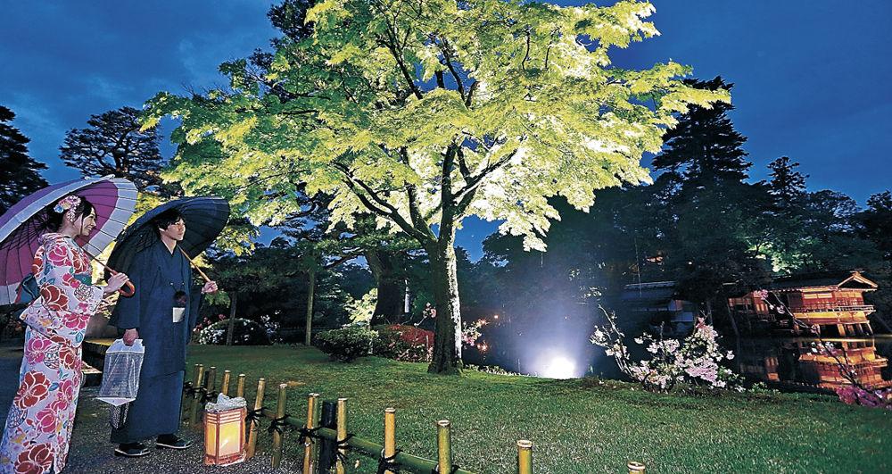 光の演出が施された霞ケ池周辺の情景を楽しむ来園者=兼六園