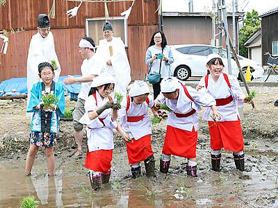 早乙女姿で児童ら苗植え 射水・十社大神の献穀田