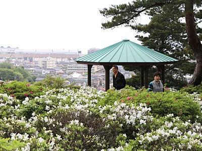 競い咲きツツジ輝く 3500株個人庭園を彩る 糸魚川