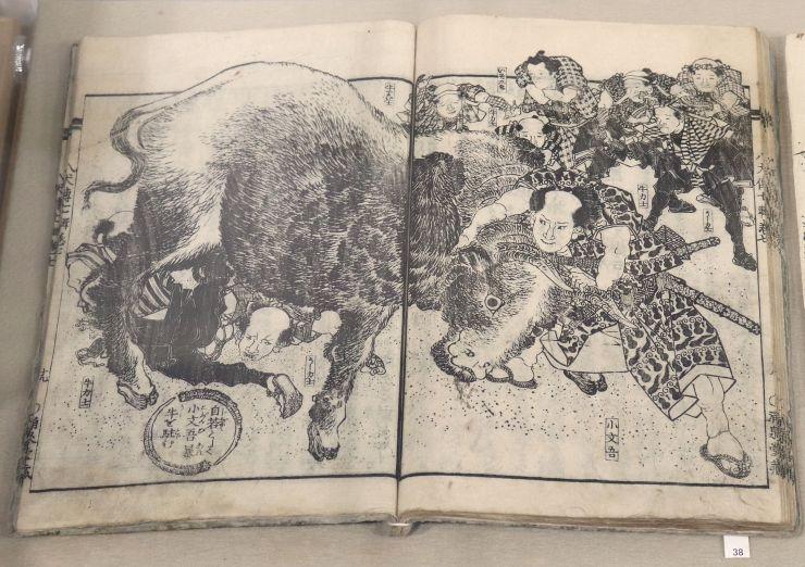 「南総里見八犬伝」で犬田小文吾が牛を取り押さえる場面の挿絵