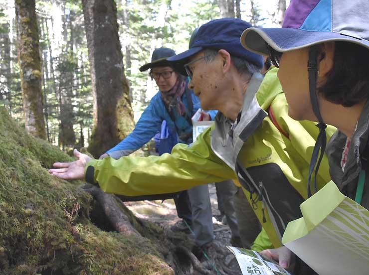昨年の「苔の森開き」でコケの説明を受ける参加者ら