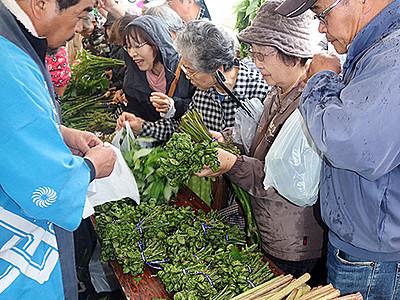 砺波栴檀山の山菜どっさり 別所の郷まつり