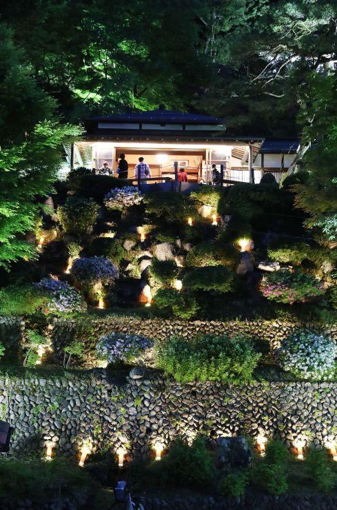 ライトアップで鮮やかに浮かび上がる楽山苑=長岡市与板町与板