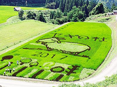 稲作アート体験いかが 6月、魚津の小菅沼・ヤギの杜