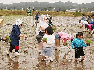 都会住民泥だらけ 小矢部で大阪の参加者が田植え