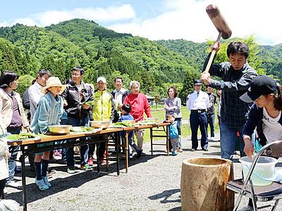 旬の山菜堪能 八尾・大長谷で恒例イベント