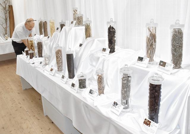 展示コーナーにズラリと並ぶ貴重な薬草の数々=福井県高浜町中山の「青葉山ハーバルビレッジ」