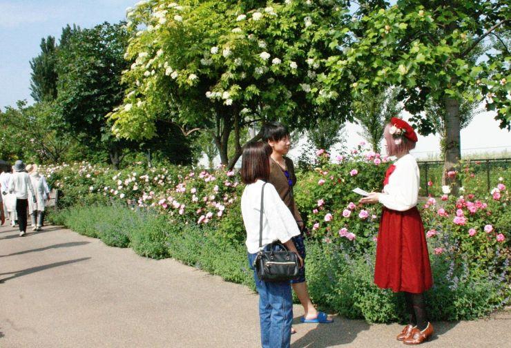 かわいい衣装を身に着けたモデル(右)も登場し会場を盛り上げたフラワーフェスティバル=27日、見附市新幸町