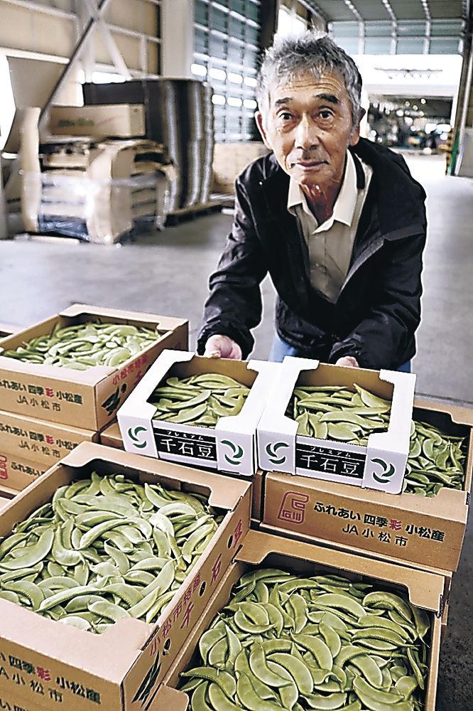 プレミアム千石豆を手に取る生産者=小松市今江町1丁目
