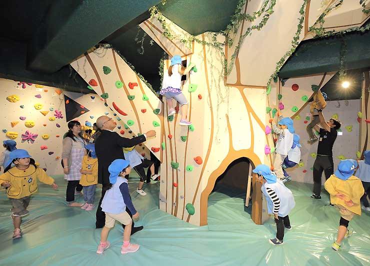 初心者や子ども向けのボルダリングルーム。森をイメージしている