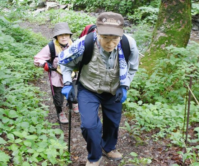 山開きの後、夜叉ケ池を目指す登山者=6月1日、福井県南越前町