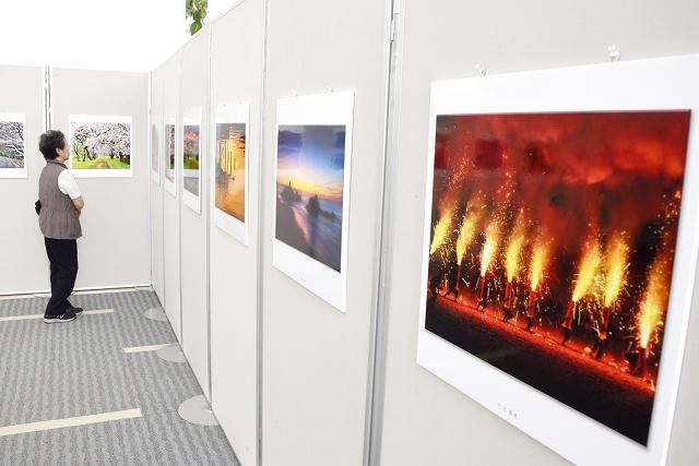 さまざまな被写体を捉えた力作が並ぶ作品展=6月6日、福井新聞社・風の森ギャラリー