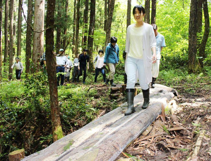 観察道にあり、表面に金網を巻き、滑りにくくした丸太橋=阿賀町中ノ沢
