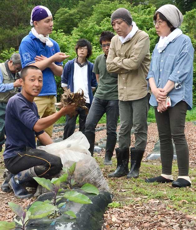 鈴ケ沢なすの栽培に使っている堆肥の説明などを聞く飲食店主ら