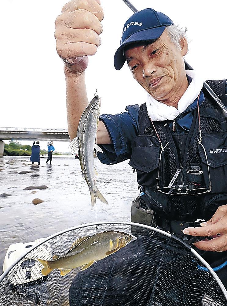 アユを釣り上げ、成育を確認する組合員=金沢市大桑町の犀川
